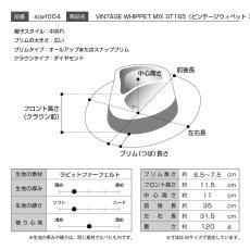 画像8: VINTAGE WHIPPET MIX(ビンテージウィペット ミックス)ST165 ブラック (8)